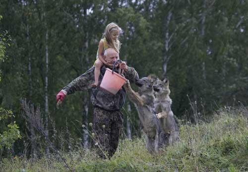 又想起与狼共舞