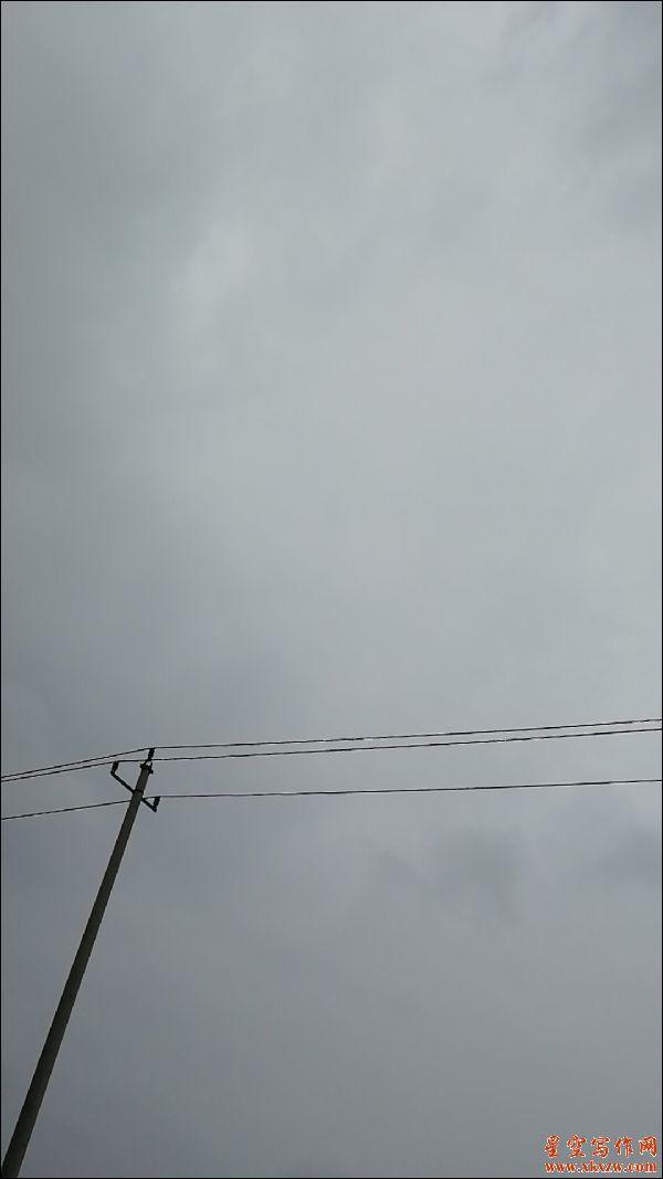 想回家的风筝